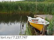 Рыбалка. Стоковое фото, фотограф Ирина Локтионова / Фотобанк Лори