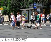 Купить «Люди переходят дорогу по пешеходному переходу, Первомайская улица, Москва», эксклюзивное фото № 7250707, снято 26 мая 2014 г. (c) lana1501 / Фотобанк Лори