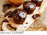 Купить «Кекс с шоколадной глазурью», фото № 7279807, снято 17 апреля 2015 г. (c) Надежда Мишкова / Фотобанк Лори