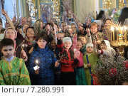 Купить «Праздник Входа Господня в Иерусалим в Новодевичьем монастыре город Москва», эксклюзивное фото № 7280991, снято 4 апреля 2015 г. (c) Дмитрий Неумоин / Фотобанк Лори