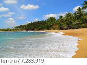 Красивый тропический пляж (2015 год). Стоковое фото, фотограф Михаил Коханчиков / Фотобанк Лори