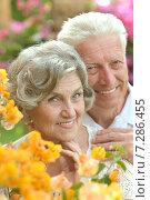 Купить «Loving elder couple», фото № 7286455, снято 5 марта 2014 г. (c) Ruslan Huzau / Фотобанк Лори