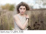 Привлекательная женщина с развевающимися волосами в сухом поле строго смотрит в камеру, фото № 7291739, снято 7 октября 2012 г. (c) Эдуард Паравян / Фотобанк Лори