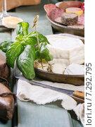 Купить «Сырная тарелка и зелень на столе», фото № 7292795, снято 2 апреля 2015 г. (c) Natasha Breen / Фотобанк Лори