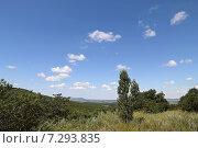 Купить «Вид на анапскую долину со стороны Верхнебаканского поселка», фото № 7293835, снято 28 июня 2014 г. (c) Емельянов Валерий / Фотобанк Лори