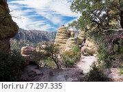 Купить «Тропа между скал в парке Chiricahua National Monument, Arizona, United States», фото № 7297335, снято 30 марта 2015 г. (c) Ирина Кожемякина / Фотобанк Лори