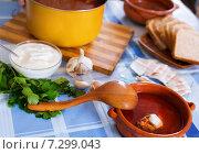 Купить «Traditional Russian soup borsch», фото № 7299043, снято 27 июня 2019 г. (c) Яков Филимонов / Фотобанк Лори