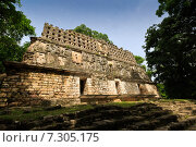 Верхняя часть пирамиды в Yaxchilan (Йашчилана), Мексика (2014 год). Стоковое фото, фотограф Борис Ветшев / Фотобанк Лори