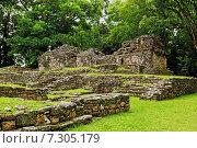 Купить «Археологические раскопки Yaxchilan (Йашчилан), Чьяпас, Мексика», фото № 7305179, снято 28 июня 2014 г. (c) Борис Ветшев / Фотобанк Лори