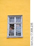 Рыжая кошка в окне. Стоковое фото, фотограф Светлана Хромова / Фотобанк Лори