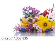 Купить «Букет весенних цветов на белом фоне», фото № 7308835, снято 24 апреля 2015 г. (c) Peredniankina / Фотобанк Лори