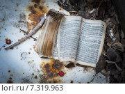 Купить «Обгоревшая книга на месте пожара», фото № 7319963, снято 26 апреля 2015 г. (c) Андрей Колмаков / Фотобанк Лори