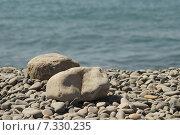 Купить «Камни на море», фото № 7330235, снято 30 августа 2014 г. (c) Дмитрий Чулков / Фотобанк Лори