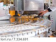 Купить «Автоматическая линия по производству мороженого и фруктового льда», фото № 7334691, снято 24 апреля 2015 г. (c) Евгений Ткачёв / Фотобанк Лори