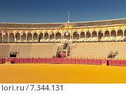 Купить «Bullfight arena (Plaza de Toros) in Seville, Andalusia Spain», фото № 7344131, снято 23 января 2019 г. (c) BE&W Photo / Фотобанк Лори
