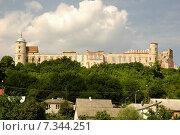 Купить «Poland, Janowiec, The Castle», фото № 7344251, снято 21 апреля 2019 г. (c) BE&W Photo / Фотобанк Лори