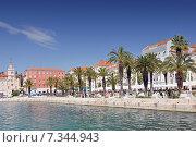 Купить «Croatia, Split, Riva Promenade, Split», фото № 7344943, снято 26 марта 2019 г. (c) BE&W Photo / Фотобанк Лори