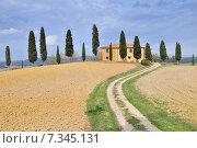 Farmhouse and Cypress trees near Pienza Tuscany Italy. Стоковое фото, агентство BE&W Photo / Фотобанк Лори