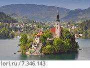 Купить «Slovenia, Bled, Lake Bled and the church of Assumption, Gorenjska Region», фото № 7346143, снято 13 декабря 2019 г. (c) BE&W Photo / Фотобанк Лори