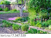 Купить «Дача весной», фото № 7347539, снято 14 мая 2014 г. (c) Олеся Новицкая / Фотобанк Лори