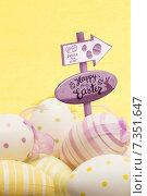 Купить «Composite image of easter egg hunt sign», фото № 7351647, снято 26 февраля 2020 г. (c) Wavebreak Media / Фотобанк Лори