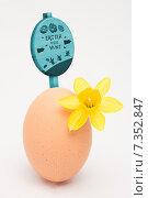 Купить «Composite image of easter egg hunt sign», фото № 7352847, снято 26 февраля 2020 г. (c) Wavebreak Media / Фотобанк Лори