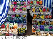 Весенняя продажа садовых растений на ярмарке (2015 год). Редакционное фото, фотограф Мячикова Наталья / Фотобанк Лори