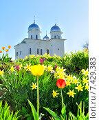 Купить «Собор Святого Георгия, Юрьев монастырь в Великом Новгороде, Россия», фото № 7429383, снято 10 мая 2015 г. (c) Зезелина Марина / Фотобанк Лори