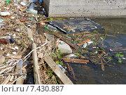 Купить «Бытовой мусор валяется на берегу реки и в воде», фото № 7430887, снято 3 мая 2015 г. (c) Ирина Борсученко / Фотобанк Лори