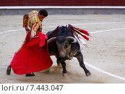 Купить «Традиционный бой с быком на арене - коррида, Мадрид, Испания», фото № 7443047, снято 25 июня 2011 г. (c) Matej Kastelic / Фотобанк Лори
