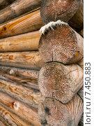 Угол старого бревенчатого дома. Стоковое фото, фотограф Александр Носков / Фотобанк Лори