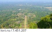 Купить «Сад Сигирия на Шри-Ланке - вид сверху», видеоролик № 7451207, снято 9 мая 2015 г. (c) Михаил Коханчиков / Фотобанк Лори