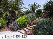 Botanical garden of Barcelona, Spain (2015 год). Редакционное фото, фотограф Яков Филимонов / Фотобанк Лори