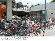 Усталые велосипеды (2008 год). Редакционное фото, фотограф Ирина Семчук / Фотобанк Лори