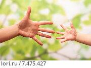 Купить «Детская и взрослая рука тянутся друг к другу», фото № 7475427, снято 19 ноября 2014 г. (c) Сергей Молодиков / Фотобанк Лори