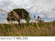 Купить «Церковь в селе Иванищи, Тверская область», фото № 7486343, снято 9 мая 2015 г. (c) Андрей Родионов / Фотобанк Лори