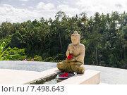 Купить «infinity edge pool with buddha statue», фото № 7498643, снято 21 февраля 2015 г. (c) Syda Productions / Фотобанк Лори