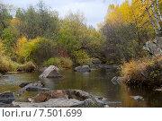 Купить «Река Никишиха. Забайкальский край», эксклюзивное фото № 7501699, снято 26 сентября 2007 г. (c) Александр Щепин / Фотобанк Лори