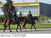 Купить «Москва. Конная полиция на ВДНХ (ВВЦ)», эксклюзивное фото № 7519935, снято 20 мая 2015 г. (c) Елена Коромыслова / Фотобанк Лори