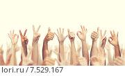 Купить «human hands showing thumbs up, ok and peace signs», фото № 7529167, снято 25 мая 2019 г. (c) Syda Productions / Фотобанк Лори