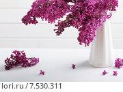 Купить «Still life with a blooming branch of lilac», фото № 7530311, снято 18 мая 2015 г. (c) Майя Крученкова / Фотобанк Лори
