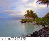 Тропический рай. Мальдивские острова (2011 год). Стоковое фото, фотограф Ирина Быстрова / Фотобанк Лори