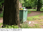 Купить «Мусорный бак в парке на Крестовском острове в Санкт-Петербурге», фото № 7550811, снято 14 июня 2015 г. (c) Ивашков Александр / Фотобанк Лори