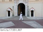 Купить «Охрана княжеского дворца в Монако», фото № 7551307, снято 19 сентября 2019 г. (c) Владимир Григорьев / Фотобанк Лори
