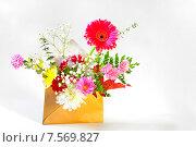 Цветочный букет в конверте. Стоковое фото, фотограф Iordache Magdalena / Фотобанк Лори
