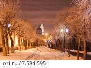 Купить «Зимний Тамбов», фото № 7584595, снято 17 января 2015 г. (c) Карелин Д.А. / Фотобанк Лори