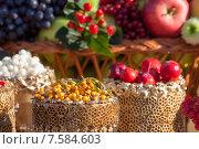 Купить «Урожай фруктов и ягод», фото № 7584603, снято 11 октября 2014 г. (c) Карелин Д.А. / Фотобанк Лори