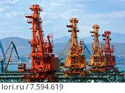 Купить «Четыре портальных перегрузчика в порту Находка», фото № 7594619, снято 24 апреля 2015 г. (c) Владимир Серебрянский / Фотобанк Лори