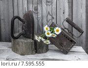 Старинные чугунные утюги и букет ромашек. Стоковое фото, фотограф Татьяна Назмутдинова / Фотобанк Лори