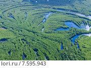 Купить «Пойма лесной реки летом во время паводка», фото № 7595943, снято 20 июня 2015 г. (c) Владимир Мельников / Фотобанк Лори